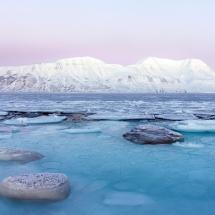 BioFoto Norge (145)