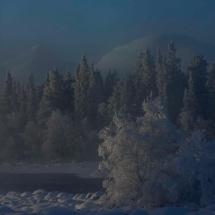 BioFoto Norge (230)