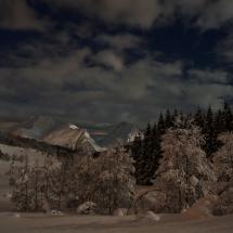 BioFoto Norge (233)