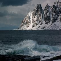 BioFoto Norge (241)