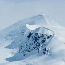 BioFoto Norge (263)