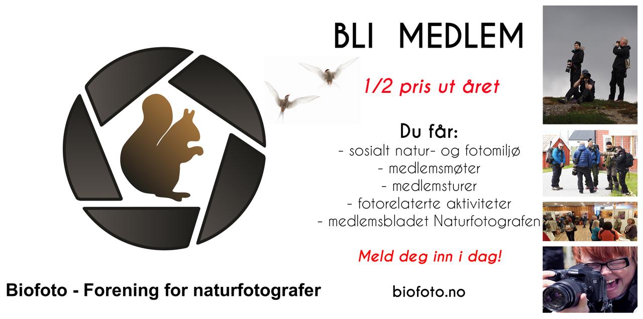 BioFoto - Bli medlem