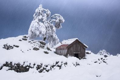Så kom vinteren. Frå Nedstastølen.