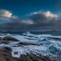 BioFoto Norge (107)