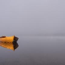 BioFoto Norge (111)