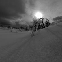 BioFoto Norge (118)