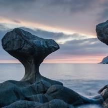 BioFoto Norge (183)