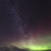BioFoto Norge (23)