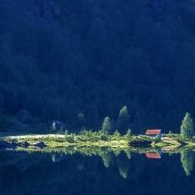 BioFoto Norge (40)