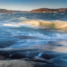 BioFoto Norge (8)