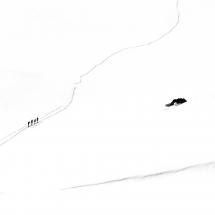 22_Bente R Dybesland_Sørlandet_Four skiers