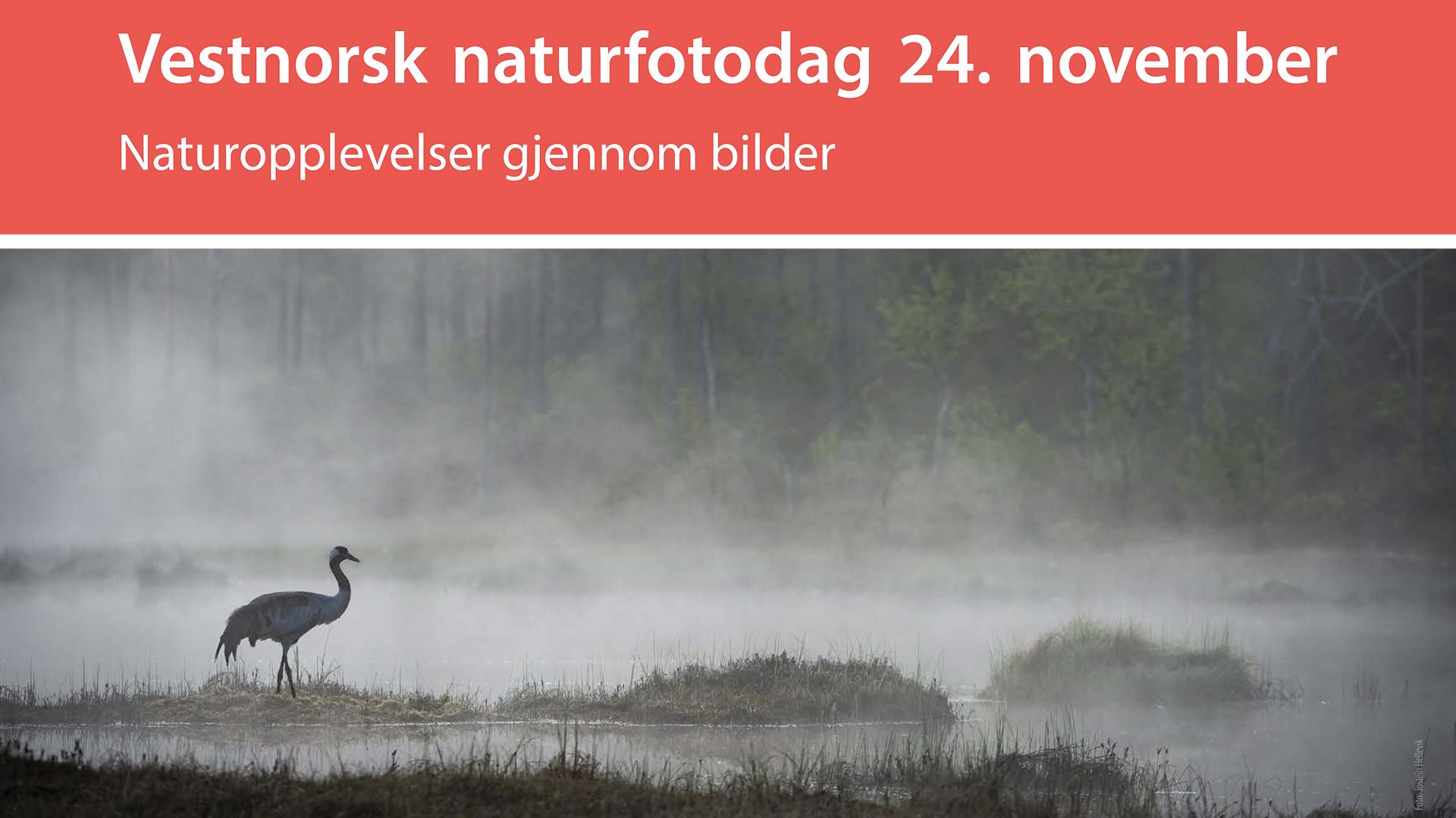 BioFoto Hordaland