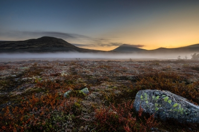 Finn-Arne-mortensen_nordland_morgendis_venabufjell