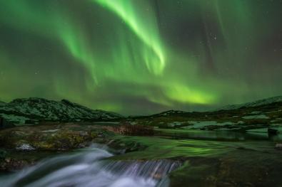 Jan-Rune-Samuelsen_IndreOstland_Naturen_Danser