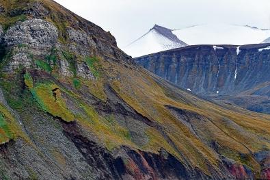 Knut-Mørkhagen_Nordland_Sjeldne-farger-på-Svalbard
