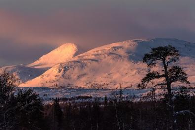 Odd-Egil-Bakken_indre-ostland_valdalsfjella
