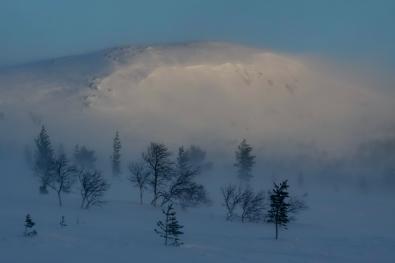 Sigrid-Eggen_Indre-Ostland_Valdalsfjellet.-2544