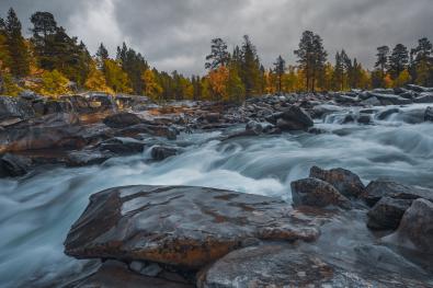 Tommy Andreassen Nordland_Saltfjellet